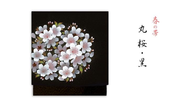 洗える帯 名古屋帯 春の新塩瀬帯「丸桜」 黒地 井澤屋