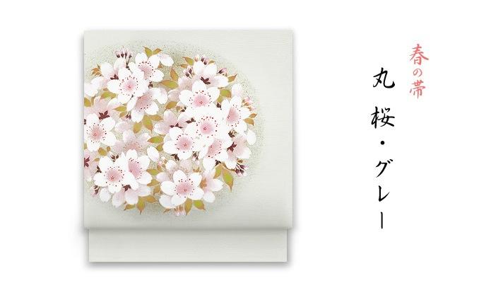 洗える帯、春の新塩瀬帯「丸桜」 グレー地