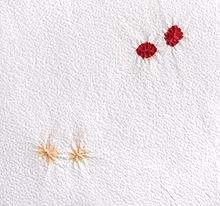 帯揚げ 白地蝶小帽子 A. 赤×淡サーモンピンク
