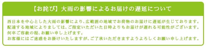 【お詫び】 大雨の影響によるお届けの遅延について 西日本を中心とした大雨の影響により、広範囲の地域でお荷物のお届けに遅延が生じております。 配達する地域によりましては、ご指定いただいた日時よりもお届けが遅れる可能性がございます。何卒ご容赦の程、お願い申し上げます。お客様にはご迷惑をお掛けいたしますが、ご了承いただきますようよろしくお願い申し上げます。