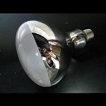 屋外投光照明用ランプ