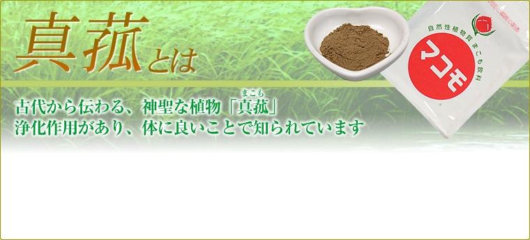 古代から伝わる、神聖な植物「真菰」浄化作用があり、体に良いことで知られています