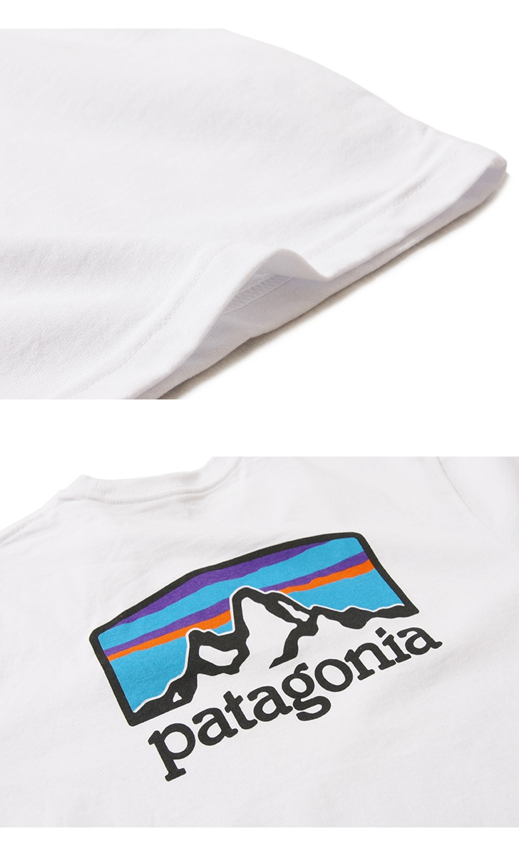 patagonia パタゴニア メンズ・フィッツロイ・ホライゾンズ・レスポンシビリティー 半袖Tシャツ M's Fitz Roy Horizons Responsibili-Tee 38501