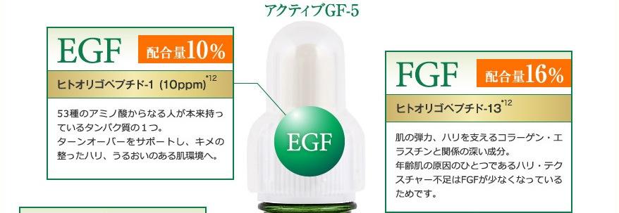 EGF、FGF