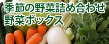 新鮮野菜ボックス