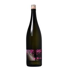山和 純米吟醸 spring 夜桜ラベル
