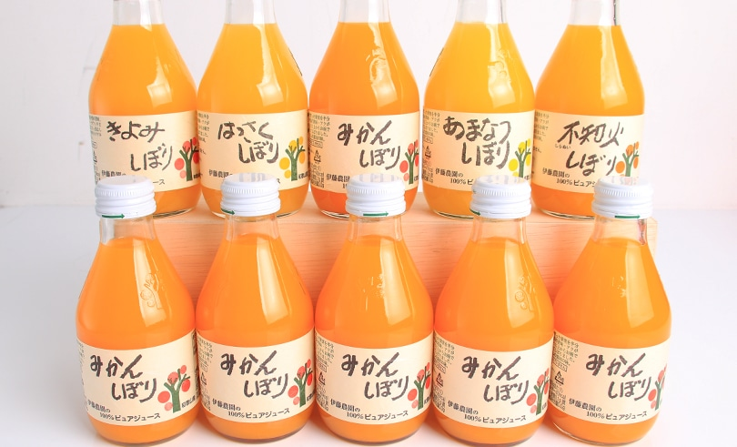 伊藤農園 100%ピュアジュース 10本ギフトセット