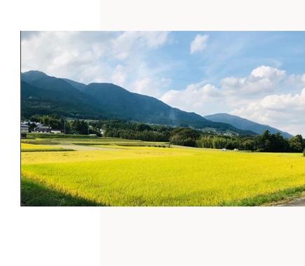 風の森(油長酒造)奈良県