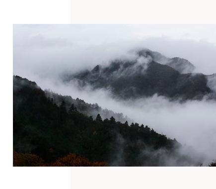 式(河武醸造)三重県 のポリシー