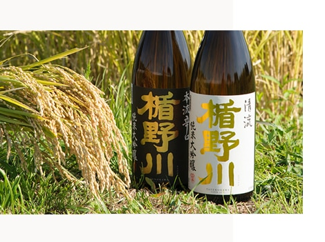 楯野川酒造