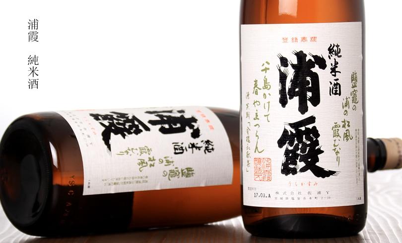 浦霞 純米酒 1.8L