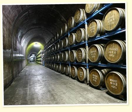 長期貯蔵酒を補完するトンネル