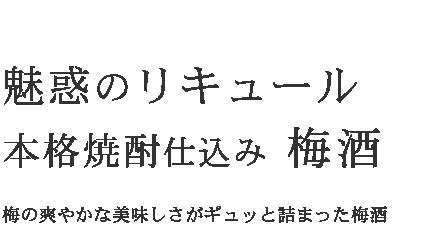 魅惑のリキュール 本格焼酎仕込み 梅酒|本格的な地酒・麦焼酎・米焼酎・そば焼酎の専門通販「神楽酒造」