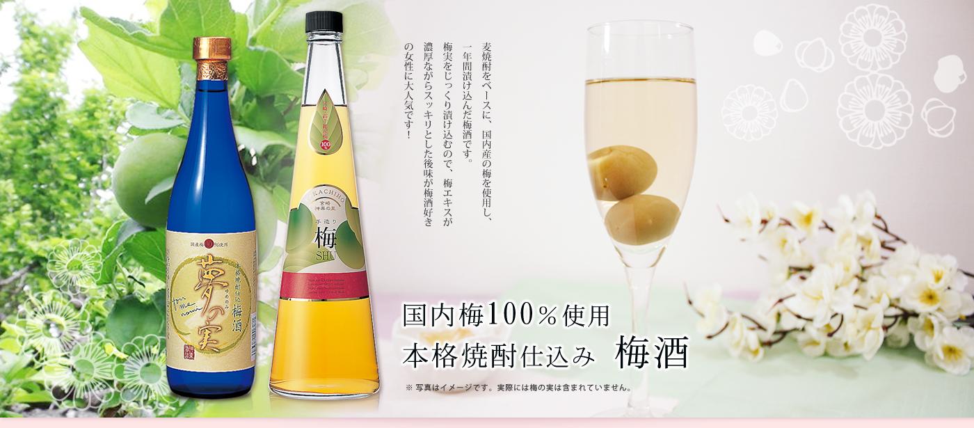 国産梅100%使用 手造り梅酒