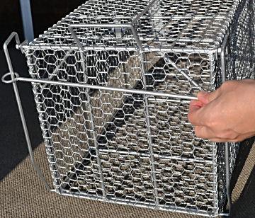 プロ御用達!捕獲カゴ スーパーキャッチL 【送料無料】 猫などの小動物捕獲器