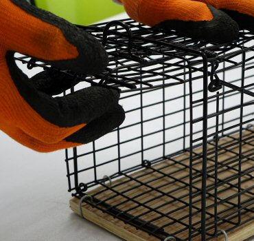 株式会社イーライフ 小動物捕獲器S型