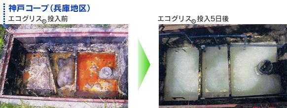 タオプランニング株式会社 えひめAI エコグリス