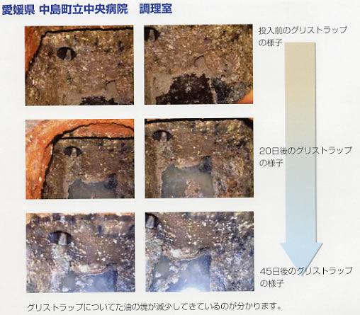 タオプランニング株式会社 えひめAI エコグリス・K