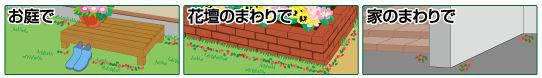 アース製薬株式会社 ハイパーお庭の虫コロリ (顆粒タイプ)