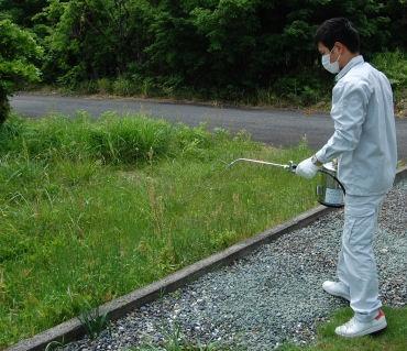 アグリマートサフロチンMC 2L 防除用殺虫剤 【第2類医薬品】