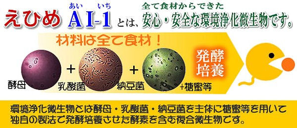 タオプランニング 新・家庭菜園用 えひめAI-1・K
