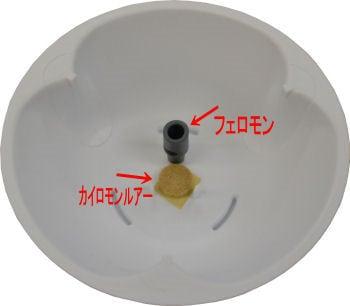 タバコシバンムシ調査用 ドームトラップ・タバコ