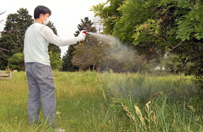 ハチノックS 使用方法