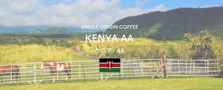 ケニアのコーヒー品種