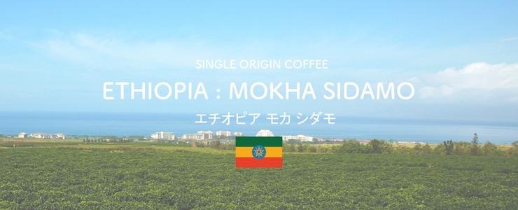 エチオピアモカシダモ