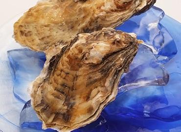 鮮魚通販|天然岩がき
