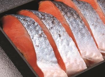 上質な脂がのった銀鮭