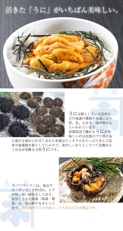 寿都湾周辺で獲れるうにが美味しいのはミネラルをたっぷり含んだ 冷たい海水で育った良質な昆布や海藻類を食べているからです。