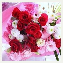 赤いバラの美しい花束