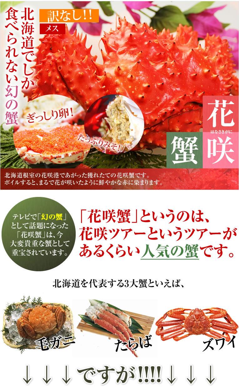 北海道ならではの大人気蟹 その名は「花咲蟹」!花咲ツアーというツアーがあるくらい人気の蟹です。テレビで「幻の蟹」として話題になった「花咲蟹」は、今大変貴重な蟹として重宝されています。北海道根室の花咲港であがった獲れたての花咲蟹です。ボイルすると、まるで花が咲いたように鮮やかな赤に染まります。どちらの言い分が正しくて「花咲蟹」になったのは不明ですが、マニアが多い花咲蟹です。