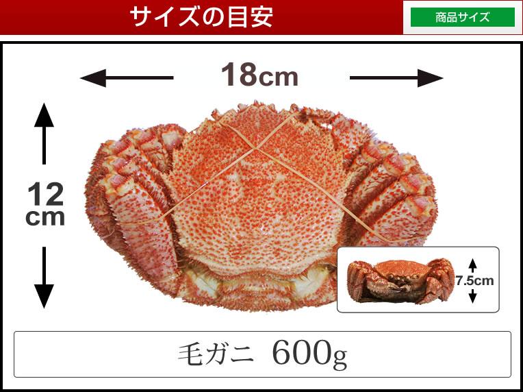 毛蟹600g