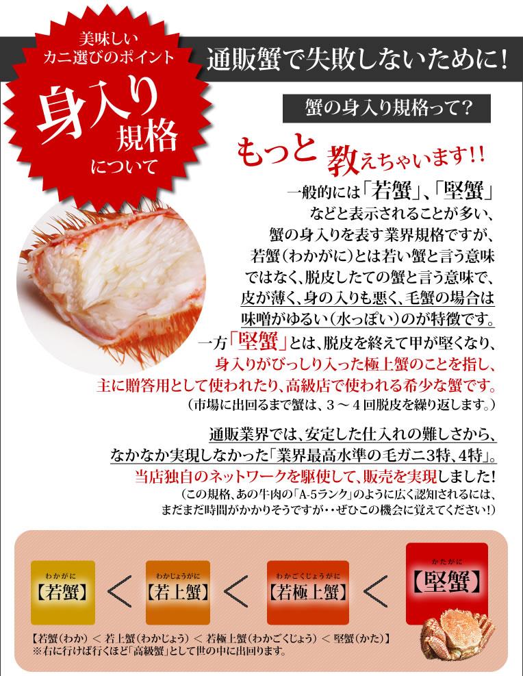 美味しい蟹選びのポイント!身入り規格について 通販蟹で失敗しないために!