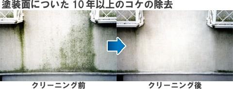 施工例5【塗装面についた10年以上のコケの除去】/スペースショット外壁用