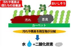 ステインアウェイ/バクテリアは汚れを分解
