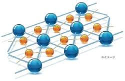 プロバランスネクスト/ポリマー構造