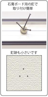 NewWing 石膏釘