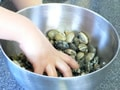 春のあさりご飯の作り方:4