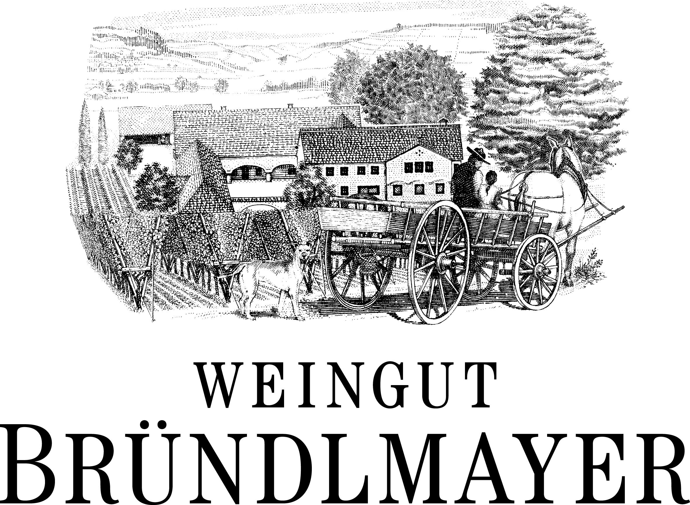 ブリュンデルマイヤー・ロゴ