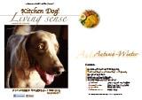 kitchendog!カタログ2015秋・冬号
