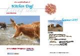 kitchendog!カタログ2015夏号