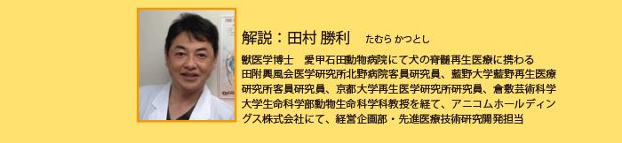 解説:田村 勝利 たむら かつとし