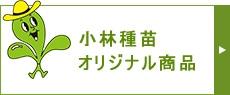 小林種苗の商品一覧