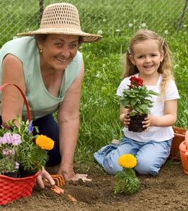 種子の輸出入だけでなく、作物育成方法や技術の伝授、海外で生産した作物の販売などにも力を入れていきたいと考えます。