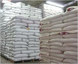 種子の生産は国内での採種に加え、より安定した気候の海外でも生産しております。