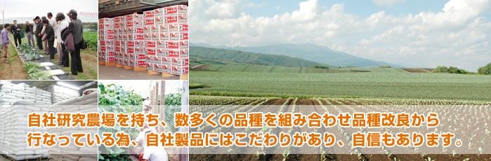 自社研究農場を持ち、数多くの品種を組み合わせ品種改良から行なっている為、自社製品にはこだわりがあり、自信もあります。