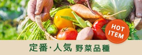 変わり種 珍しい野菜品種